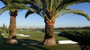 Zaudin Golf