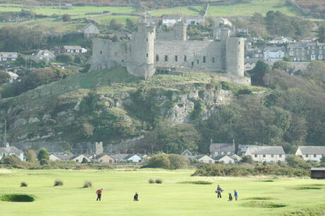Royal St Davids Golf Course
